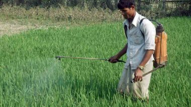 Cabinet Increases Minimum Support Prices Of Kharif Crops For 2021-22