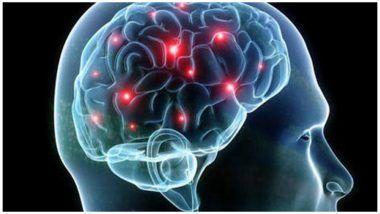 Indian Scientist Yogita K Adlakha Develops Human Model To Study Brain Disorders