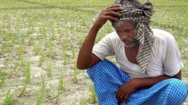 Maharashtra Farmer Suicides: 300 Farmers Killed Selves in November 2019 After Unseasonal Rains Lashed State