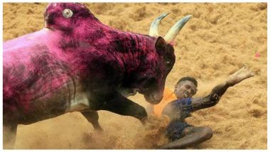 Jallikattu: 19-Year-Old Gored to Death by Bull in Madurai