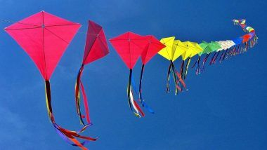 Makar Sankranti 2021 Dos and Don'ts: From Performing Kala Til Daan to Preparing Khichdi, Rituals That Brings in Good Luck & Prosperity on This Auspicious Day
