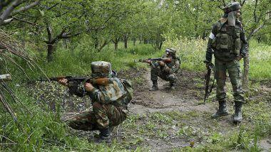 Chhattisgarh: 2 Naxals Killed in Dantewada Encounter With Security Forces