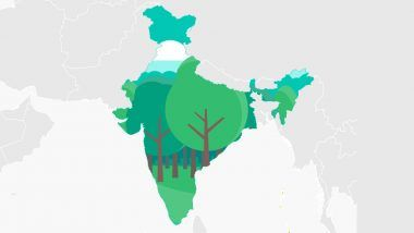 Forest Land in India: With 24.4% of Area Under Tree Cover, Nation Ranks 10th in The World