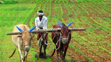 Economic Survey Calls for New Policies to Improve Water Efficiency in Farm Sector