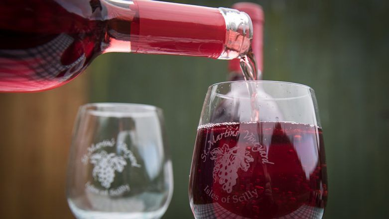 Red Wine Benefits Your Digestive System, But Still Bad for Your Health, Says New Study