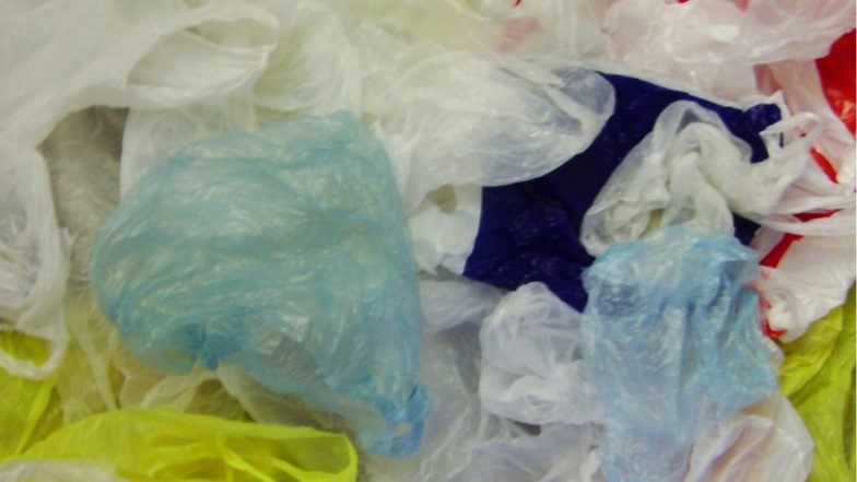 Plastic Ban in Maharashtra: Mumbaikars to Pay RS 10,000 Fine to BMC From June 23 on Use of Plastic Bags