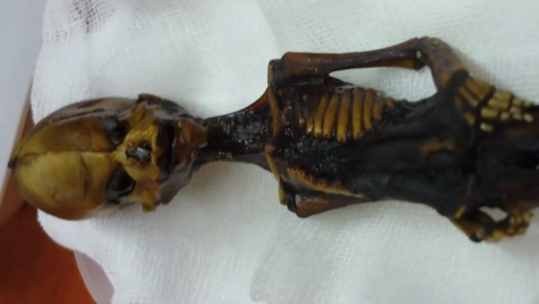 Tiny Mummy Alien Mystery Finally Solved, Know What The Skeleton from Atacama Means