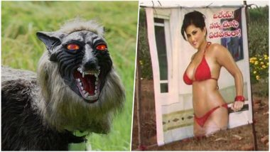 Super Monster Wolf Protect Crops in Japan While Sunny Leone Does the Same Job in India