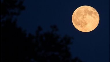 Easter 2018 Welcomed by Blue Moon: 'Paschal Moon' Appears on Auspicious Easter Eve