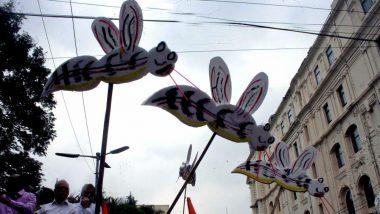 Indian Scientists Make Ayurvedic Drug to Cure Dengue