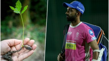 IPL 2018: Rajasthan Royals to Plant One Million Saplings as Part of Go Green Initiative