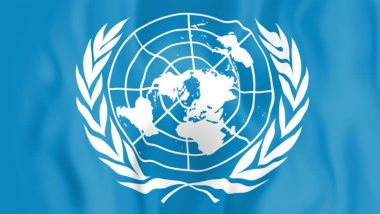 Building Peaceful Neighbourhood Pakistan's Foreign Policy Priority: UN Envoy