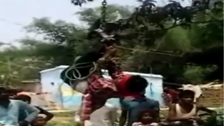 Bihar: Man Thrashed, Hung Upside Down For Stealing Mobile Phone in Darbhanga's Hingoli village; Watch Video