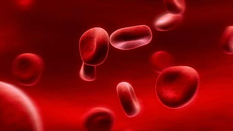 World Haemophilia Day 2018: Causes, Symptoms And Treatment of This Inherited Blood Disorder