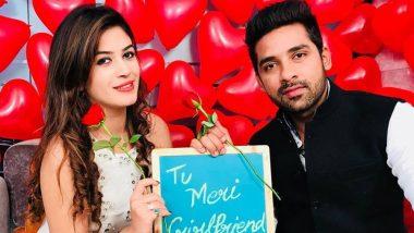 Bigg Boss 11 Couple Bandgi Kalra and Puneesh Sharma Opt for Live-In Relationship
