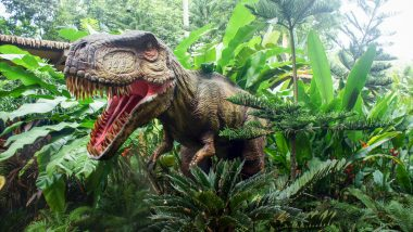 Dinosaurs Too Liked Perfumes That We Enjoy: Research
