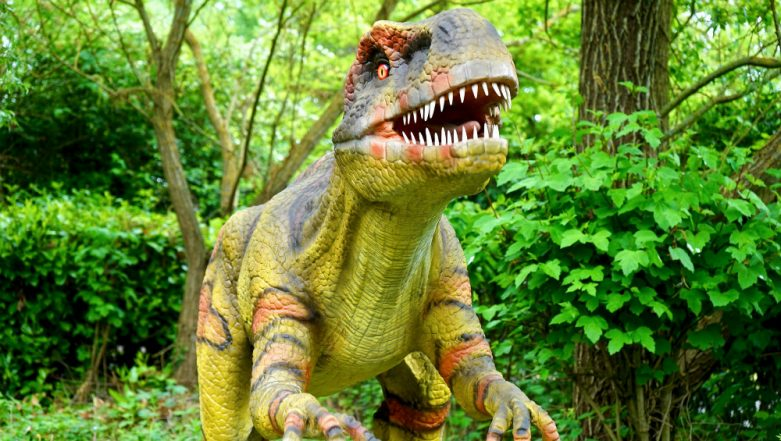 Why did the Dinosaurs Become Extinct? It was Flowers and Not an Asteroid Strike That Killed the Giant Lizards
