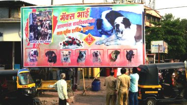 Tired of Political Hoardings in the City, Kalyan Residents Mock Netas With Dog's Birthday Banner