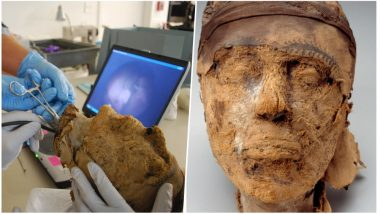 Mystery Behind 4000-year-old Mummy Found at Deir El Bersha, an Ancient Egyptian Necropolis Solved by FBI