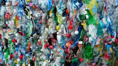 Non-biodegradable Plastics Problem Solved: Scientists Accidentally Create Bacteria That Eats Plastic