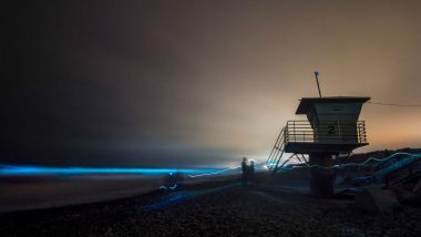 Red Tide Leads to Glowing Bioluminescent on San Diego Beaches (See Pictures)