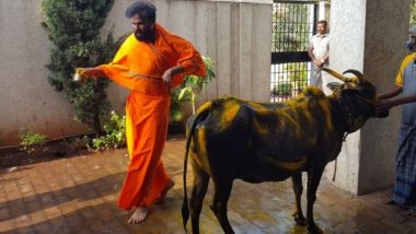 Karnataka Assembly Elections 2018: BJP's Sriramulu Performs 'Gau Puja' Before Casting His Vote