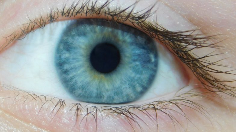 Contact Lens That Change Colour Used For Releasing Drugs and Monitoring Eye Treatments