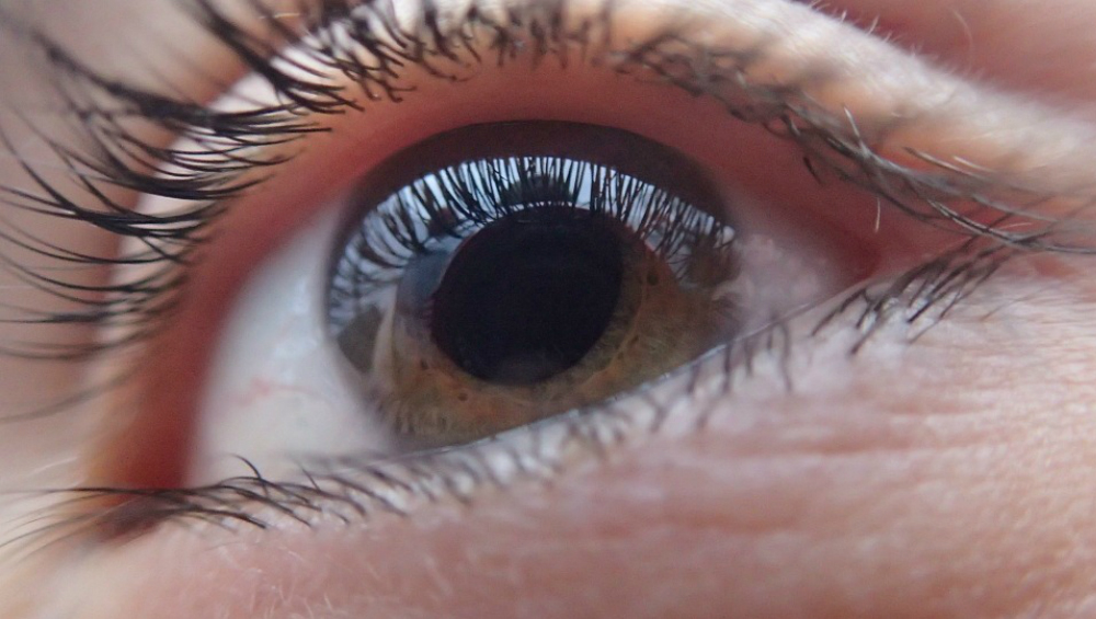 World Keratoconus Day 2019: History and Significance of the Day Meant for Awareness About the Non-Inflammatory Eye Condition