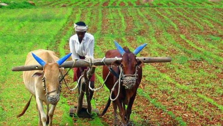Google-Enabled Mobile App AgroStar Helping Small Farmers in India