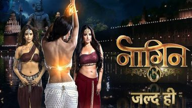 Naagin 3 Promo: Rajat Tokas, Karishma Tanna and Anita Hassanandani Will Get You All Excited about This Supernatural Drama