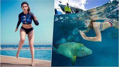 Parineeti Flaunts Sexy Figure in Speedo Bikini but It's Her Snorkeling Picture We're in Love With