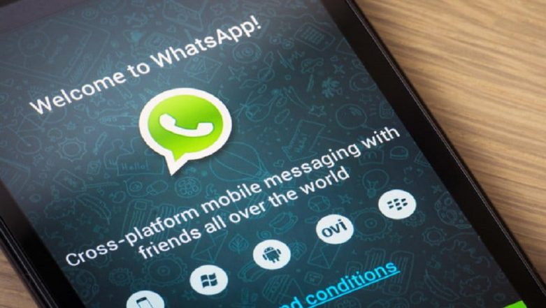 WhatsApp Unveils Tipline to Report Fake News in India Ahead of Lok Sabha Elections 2019