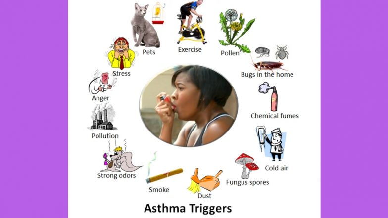 World Asthma Day 2018: How Each Season Can Trigger and Worsen Asthma