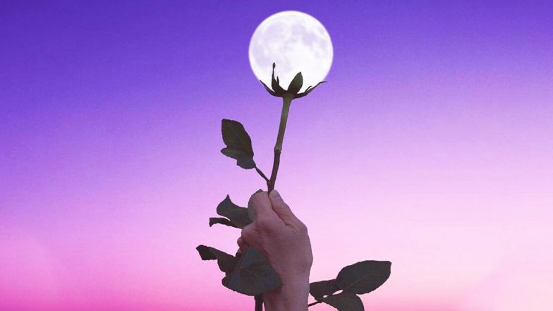 Flower Moon 2018: All You Need to Know About the Full Moon of May and Why it is Called So?