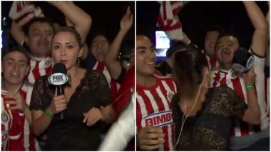 Man Gropes Fox Sports Reporter on Live TV, She Hits Back With Her Microphone, Watch Video