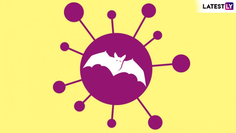 What is Nipah Virus? Symptoms, Causes, Treatment and Preventive Measures of the Bat-Borne Illness