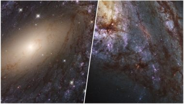 NASA's Hubble Telescope Captures Pictures of Stars Forming in Nearby Galaxies