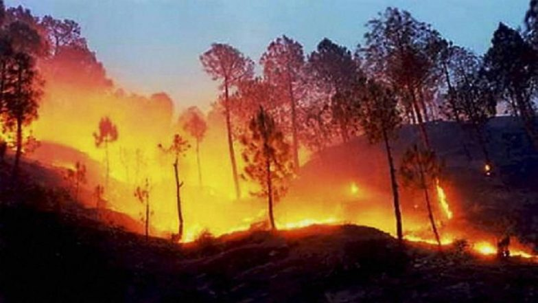 Uttarakhand Forest Fire Rages in State, Destroys Hundreds of Hectares of Land in Almora, Nainital, Tehri, Dehradun and Haldwani