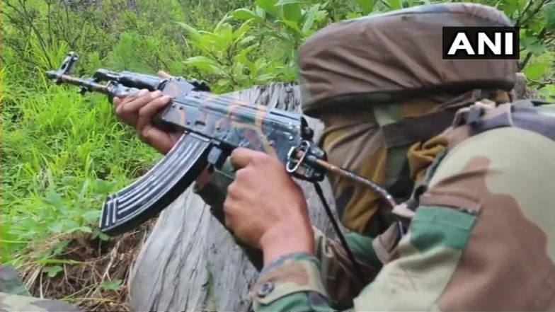 Jammu and Kashmir: One Army Personnel Martyred, Two Terrorists Killed in Ongoing Operation in Bandipora's Panar Forest Area