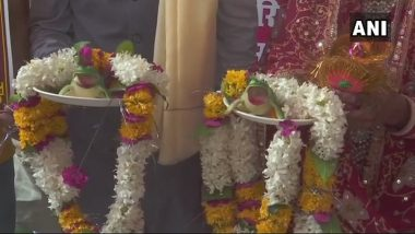 Frogs' Wedding Organised in UP and MP to Appease Rain God, Minister Joins! Watch Pics and Videos of Unique Marriage Ceremonies