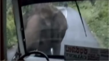 Elephant Attacks a Bus in Calicut, Passengers Panic: Watch Video
