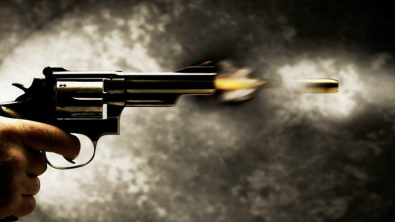 Man Identified as Former BSP MP's Son Seen Brandishing Gun Outside Five-Star Hotel in Delhi; Watch Video