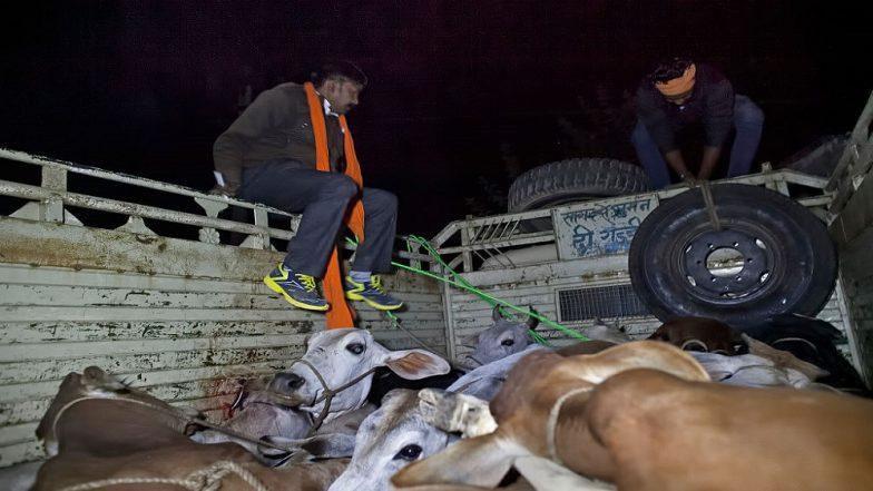 Jammu And Kashmir: 'Gau Rakshaks' Strike in Kathua, Set Truck on Fire Alleging Cattle Smuggling