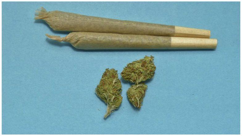 Canada Becomes Second Nation to Legalize Marijuana