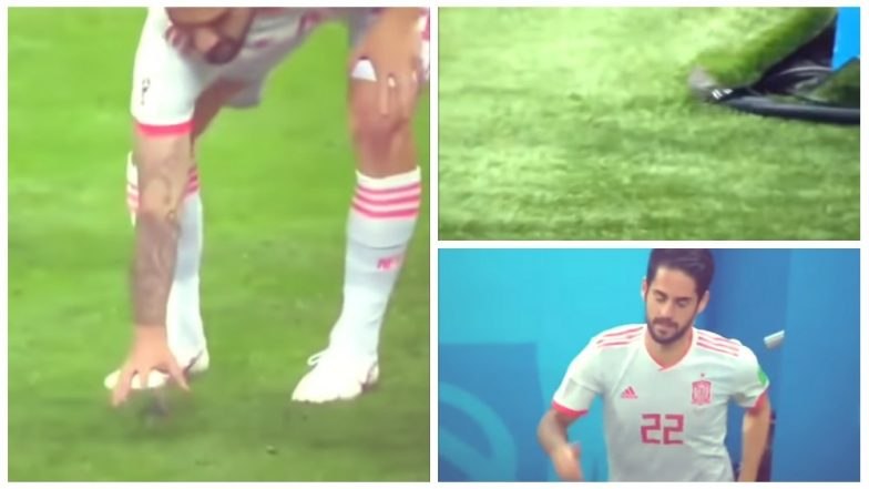 Watch Video of Spanish Footballer Isco Save A Bird's Life During Match Against Iran At 2018 FIFA World Cup!