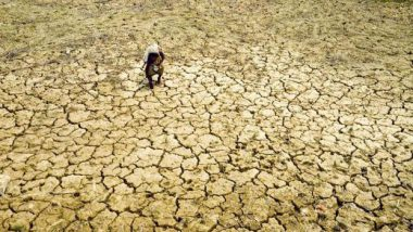 Maharashtra Drought: Election Commission Relaxes MCC to Allow Govt to Extend Relief Measures