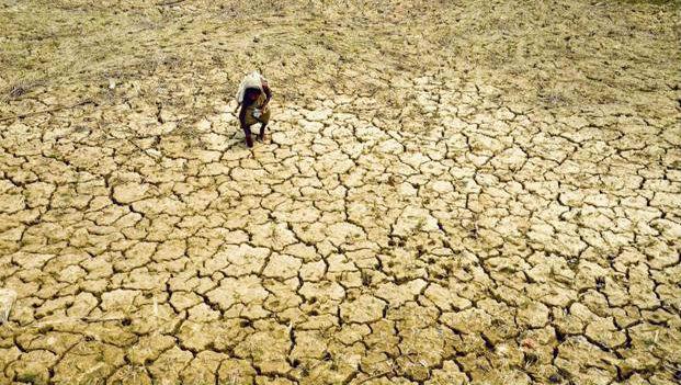 Karnataka: 23 Districts Decalred Drought-Hit Due To Rain Deficit