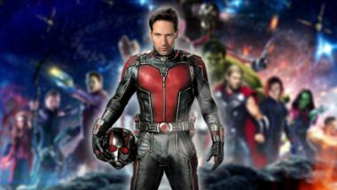 Paul Rudd Reveals That Ant-Man WAS in the Avengers: Infinity Movie