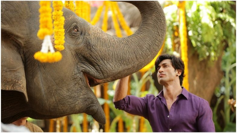 Junglee Trailer Preview: Vidyut Jammwal Is Stunningly Amazing In His 'Wild' Avatar!