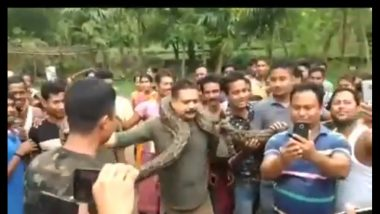 Watch Video: Python Strangles Forest Officer in Jalpaiguri, While Posing for Selfie, Miraculously Escapes Snake